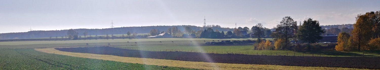 Sportverein Niederfrohna e.V.